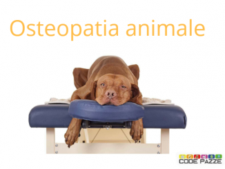 Osteopatia animale®